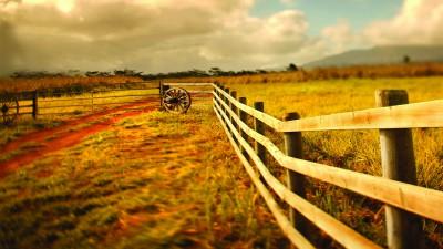 home durham bison ranch